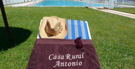 15-casa_rural_antonio_en_salamanca_tumbona_de_la_piscina